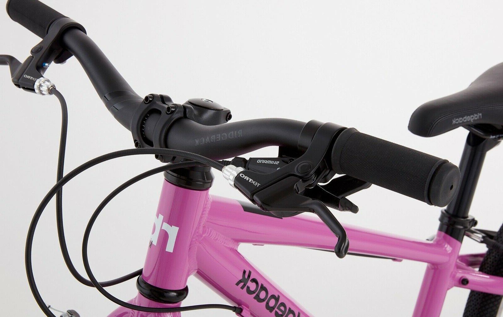 Ridgeback Dimension Bike