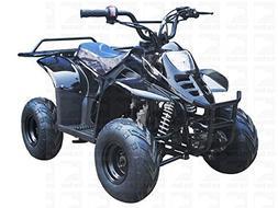 TAO TAO 110cc  Gas ATV Fully Automatic ATV 4 Wheeler for KID